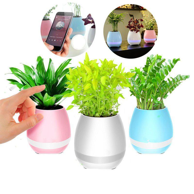 Díky inteligentnímu květináči bude o rostlinu skvěle postaráno.