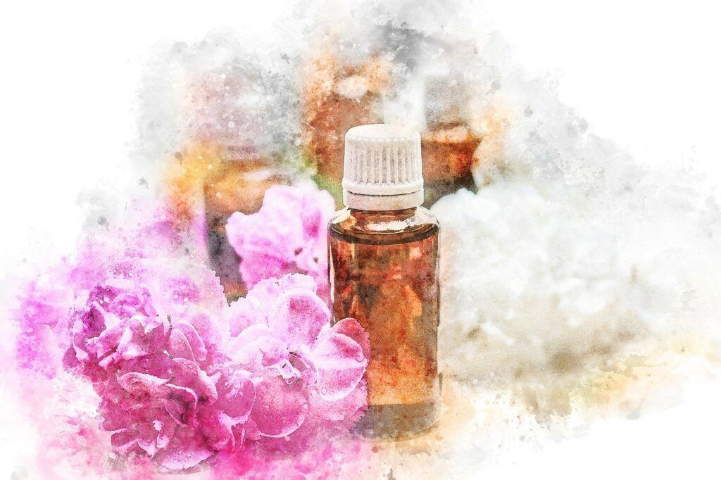 Parfumerie Notino – jak nakupovat, recenze