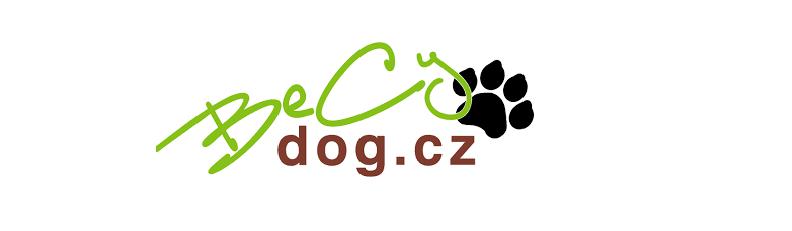BeCydog – recenze, zkušenosti, slevový kupón