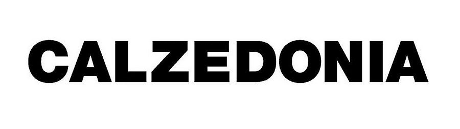 Calzedonia e-shop – recenze, sleva, jak nakupovat